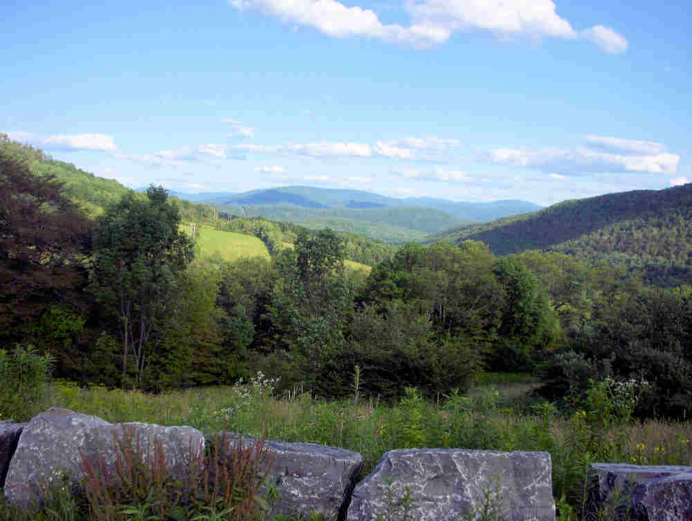 VIEW FROM PALMER HILL: DON'T OVERLOOK THE OVERLOOK! — August 2010