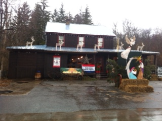 ANDES GENERAL STORE  - January 2016