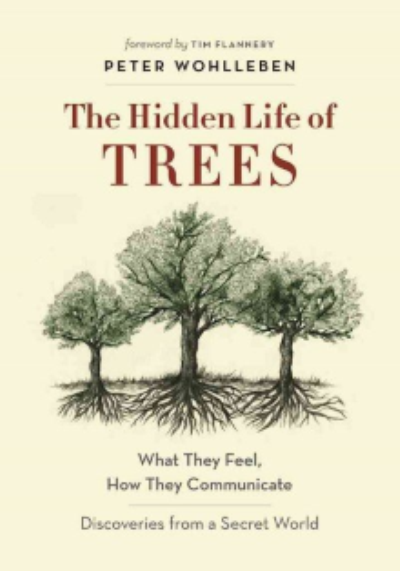 BOOK REVIEW: Peter Wohlleben, The Hidden Life of Trees - January 2017